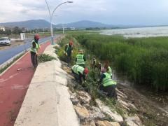 Beyşehir Belediyesinden göl kıyılarında yabani ot mesaisi