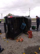 Ereğli'de kamyonet devrildi: 2 yaralı