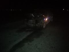 Otomobil koyun sürüsüne daldı, 30 koyun telef oldu
