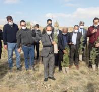 Yunak'ta 3 bin 700 fidan toprakla buluştu