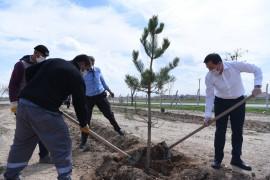 """Karatay Belediyesi'nin """"Yeşil Seferberliği"""" 2021 yılında da sürecek"""