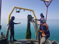 Konya'nın incisi Beyşehir Gölü temizleniyor