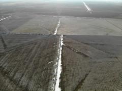 Konya'da yağışlar çiftçinin yüzünü güldürdü