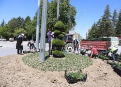 Ereğli Belediyesinden çiçeklendirme çalışmaları