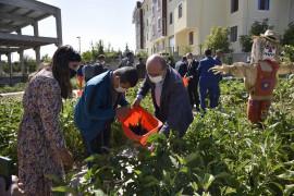 Selçuklu Özel Uygulama Okulu 3. Kademe'de engelsiz tarım festivali